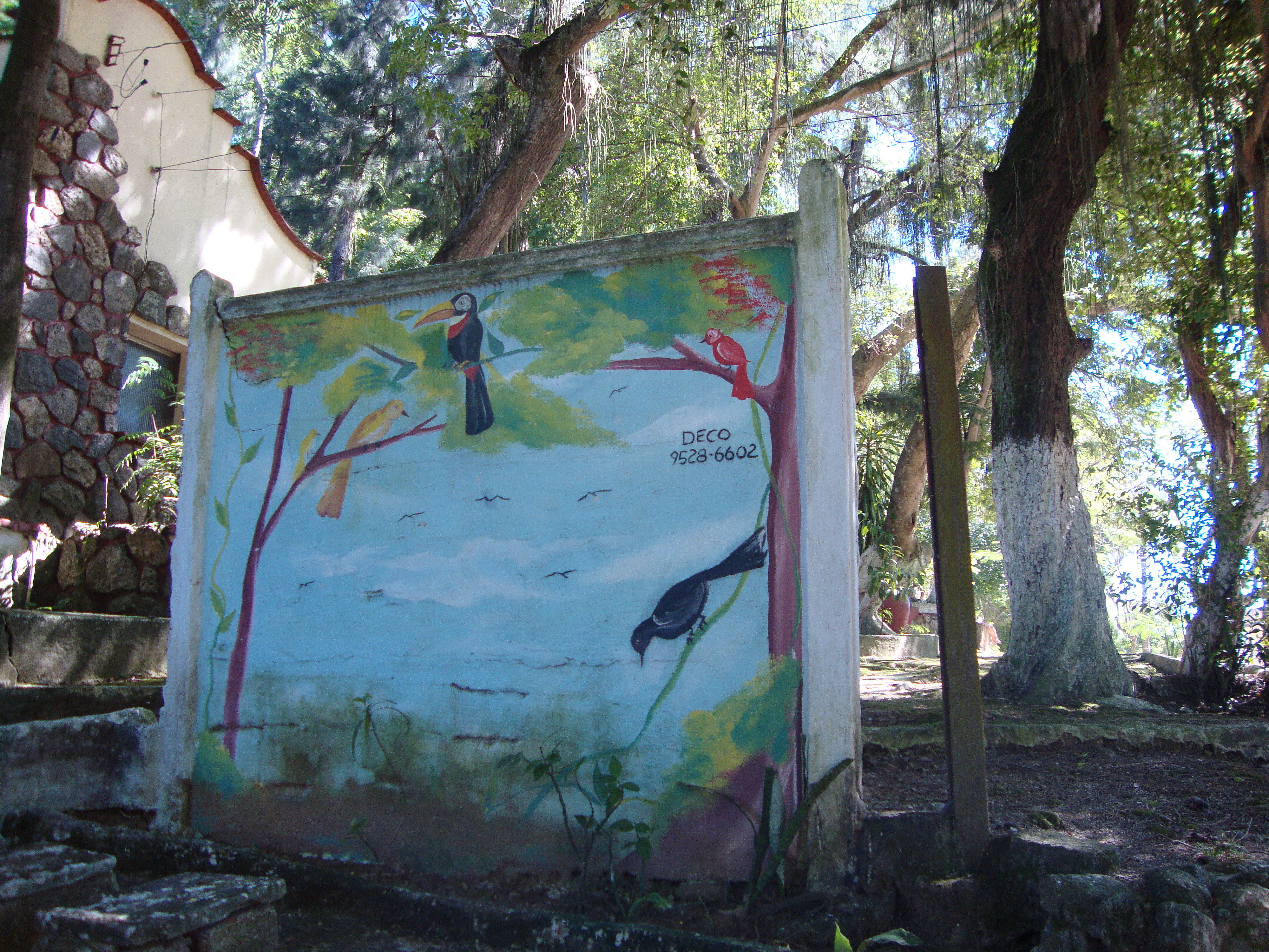 The bird cemetery on Paqueta